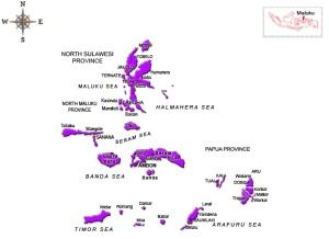 iDes-Maluku